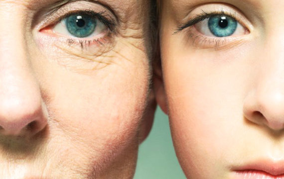 Dutch Researchers Erasmus MC successfully reverse ageing