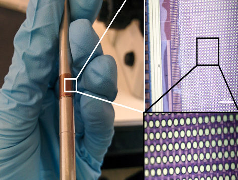 DARPA funded project looks into less invasive brain implant device