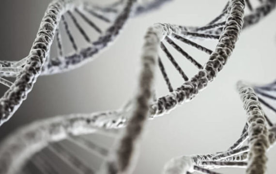 Scientists discuss project to create synthetic human genome