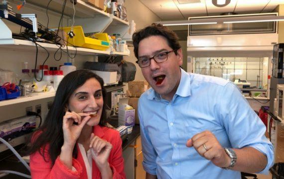 Flexible ingestible sensor can help diagnose digestive disorders