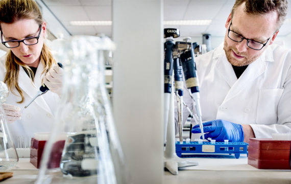 Dutch government grants 113 million for ground-breaking research