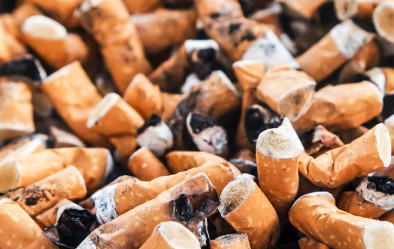 Online tool gives insights in effects of policy on tobacco related deaths